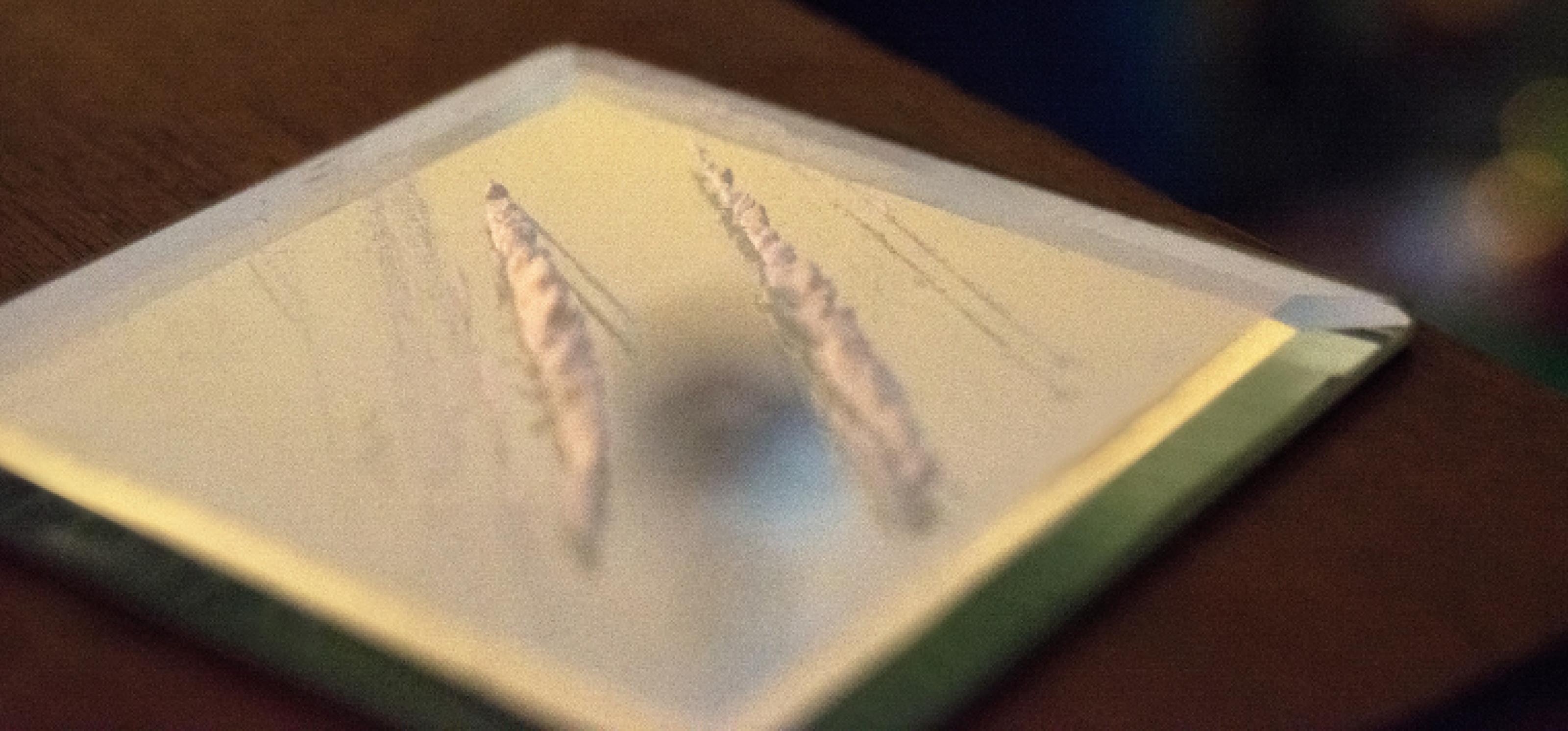 Auf einem Spiegel liegen zwei Lines Kokain